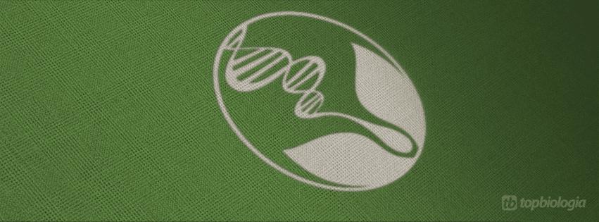 Logo Biologia em Tecido Verde  topbiologiacom