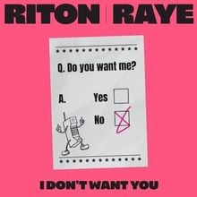 Download Audio I Don't Want You by Riton & RAYE mp3 download