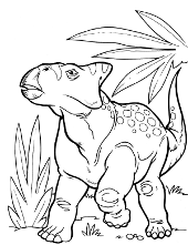 Coloring pages, books with dinosaurs, Tyrannosaurus Rex