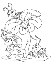 Ants coloring books