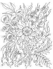 Adult's coloring page