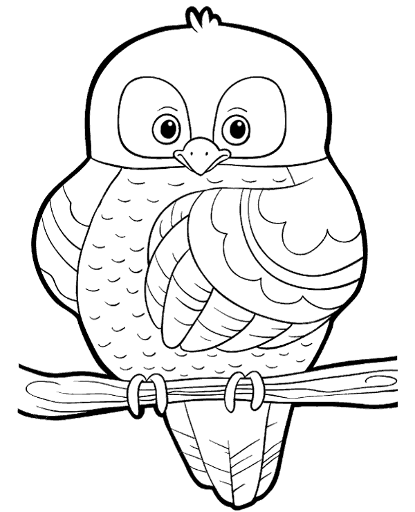 High-quality Owl sitting on a branch to print for free