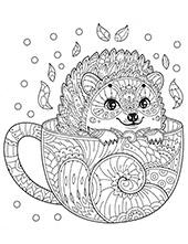 Hedgehog in a pot
