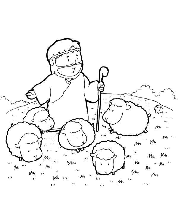Shepherd with sheeps