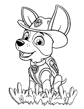 PAW Patrol coloring pages pictures to color for children
