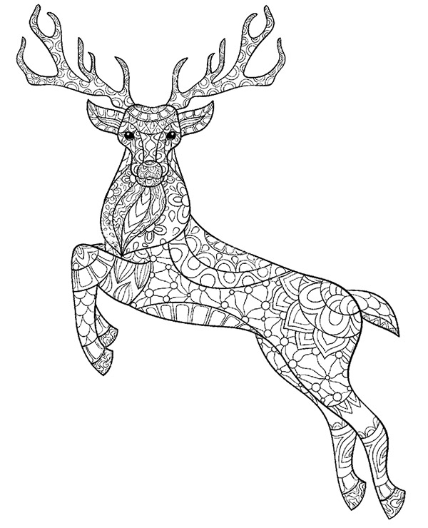 Deer, stag printable colouring pages for adults
