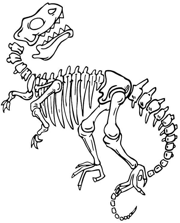 Dinosaur Skeleton Coloring Page : dinosaur, skeleton, coloring, Skeleton, Dinosaur, Coloring