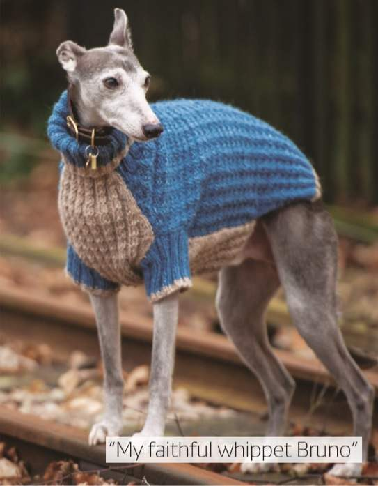 Greyhound Coat Pattern : greyhound, pattern, Crafting!, National..., Crochet, Patterns
