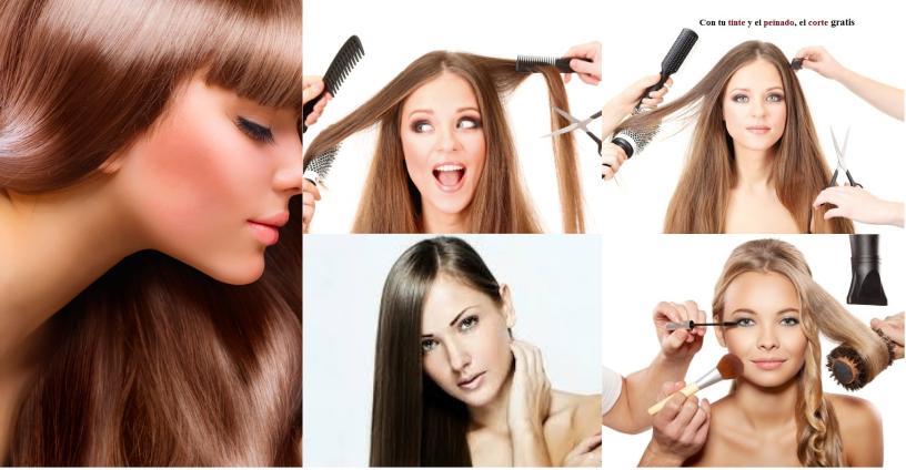 cursos de peluqueria online gratis