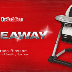 Graco Blossom 4-in-1 Seating System Highchair