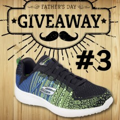 Father's Day Giveaway #3: Four Pairs of Skechers Men's Shoes