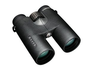 Bushnell-Elite-Binoculars-10x42mm-0