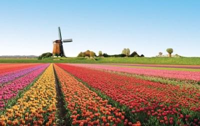 Tulipány v Holandsku Zaujímave miesta