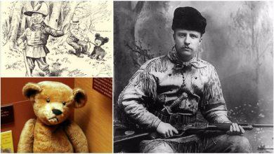 Teddyho medvedík