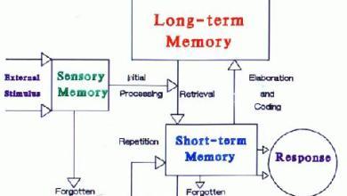 Základne pojmy spracovania informácií