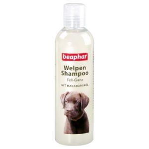 beaphar šampón pre šteňatá pre lesk srsti