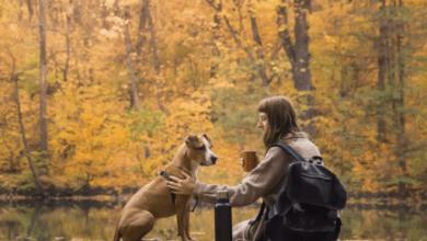 Každý deň trávte so svojim psom čas počas ktorého sa budete venovať iba jemu