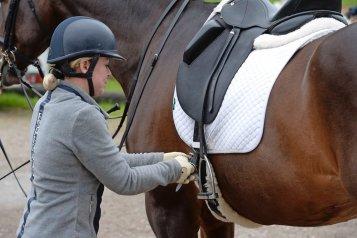 upevnenie sedla Ako osedlať koňa