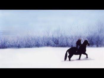 Vianočné žriebä Vianočné filmy o koňoch