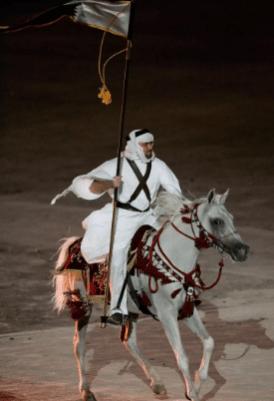 Arabské kone majú o jeden stavec menej ako iné plemená