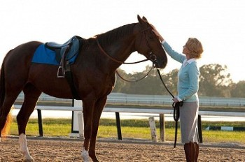 Skutočný príbeh - Odvážna žena Filmy o koňoch : Top 10