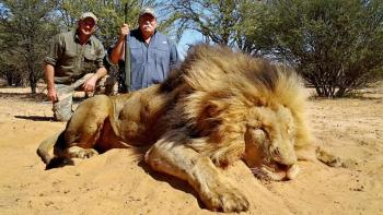najvacsi uloveny lev