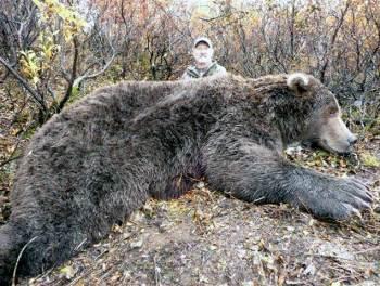 najvacši ulovený medved