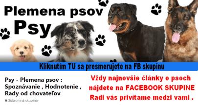 pes plemena psov fb