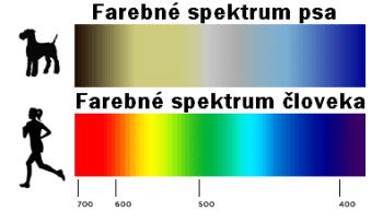 farebne spektrum psa Ako vidia psy