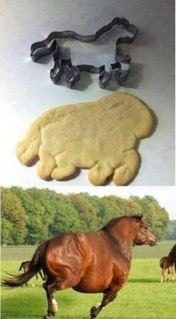 zabavne obrazky kon