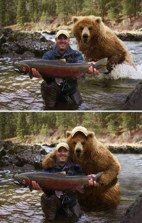 zabavne obrazky medved