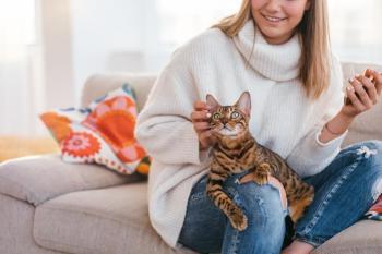 mačka rada sedi na nohach mačka vyznáva lásku