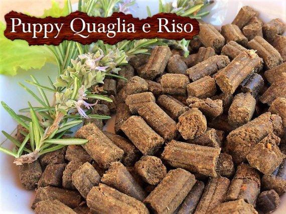 top-dog-puppy-quaglia-riso