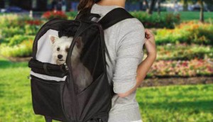 Benefits of a Dog Backpack Carrier & Why I Love Them