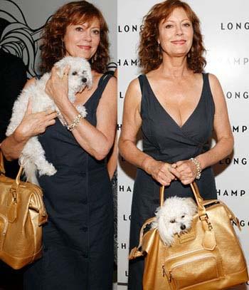 Susan Sarandon Dog Backpack Carrier