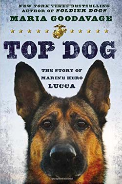 Book Review Top Dog The Story of Marine Hero Lucca