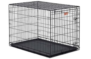 Dog Cage for Sale - Where to Buy
