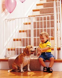 How to Choose Dog Gates and Playpens for Dogs Kids Child