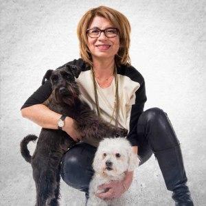 Dog training school tips and advice