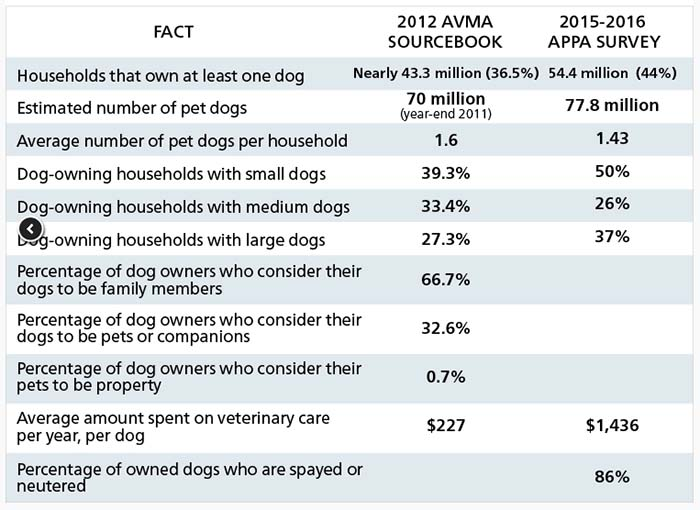 Number of dogs in the United States