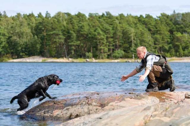 Labrador Retriever - Best Hunting Dog