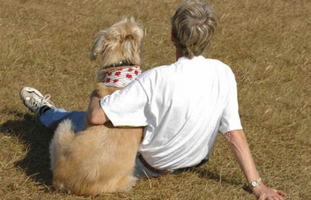 Research Suggests Hormonal Link to Bond Between Dogs and Humans