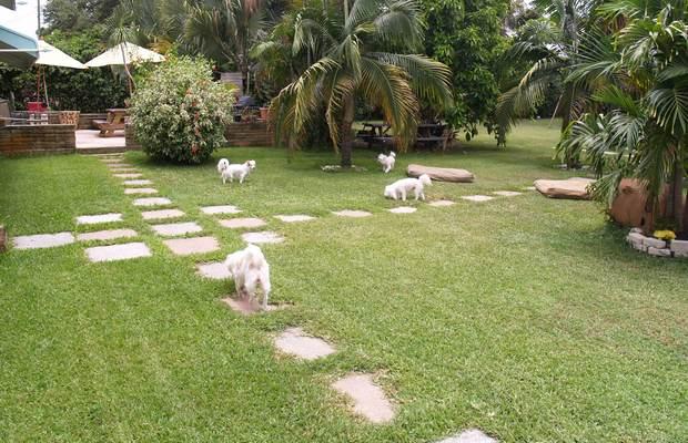 Pet Accommodation Company Expanding
