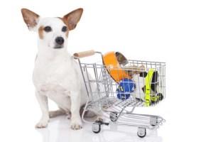 Dog Supplies Business Ideas