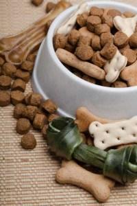 free dog food samples and treats