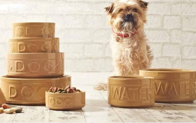 Mason Cash Stoneware Pet Products are Durable and Unique