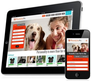 New Dog-Adoption Service Makes Matches Based on Personality
