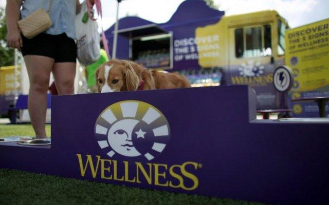 Wellness Natural's Brings Dog-Shaped 'Food' Truck to Virginia Beach