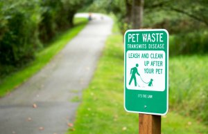 How Dog Pooper Scoopers Are Saving Our Planet