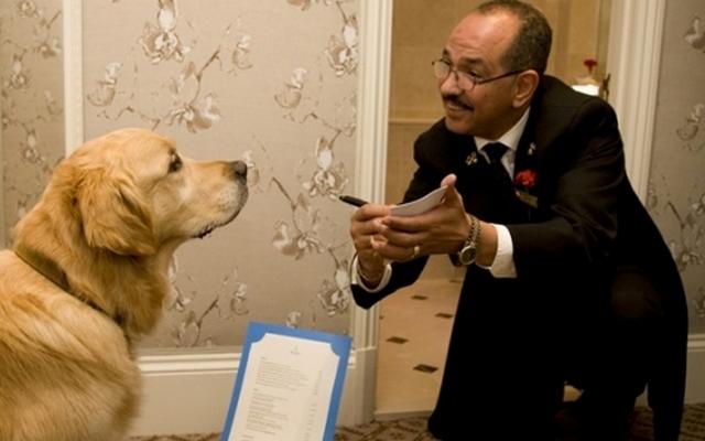 London Hotel Sets the Bar High for Pet Friendly Establishments